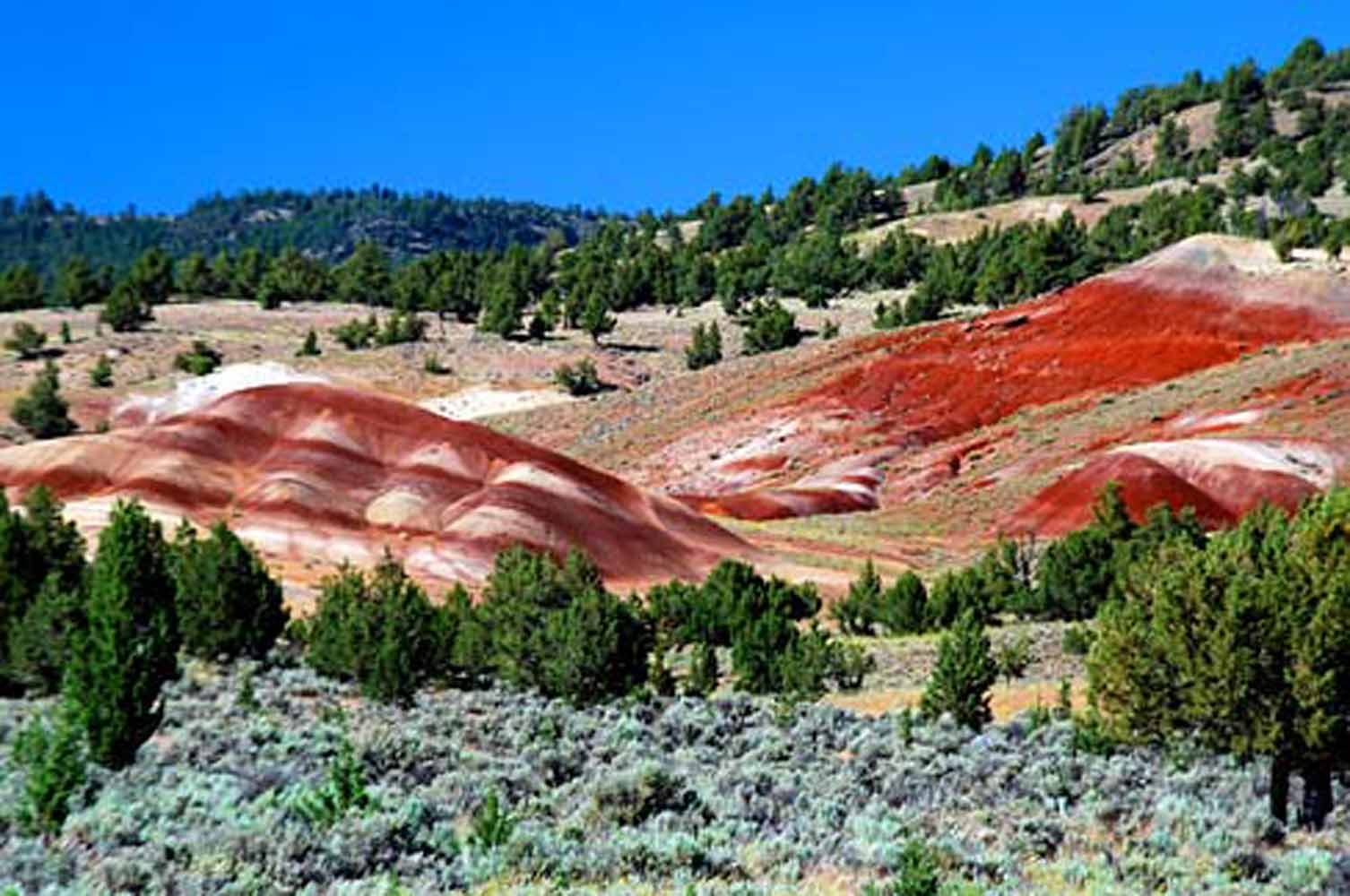 Crook County, Painted Hills