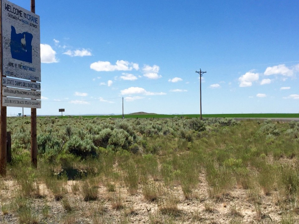 Crane Alfalfa Fields